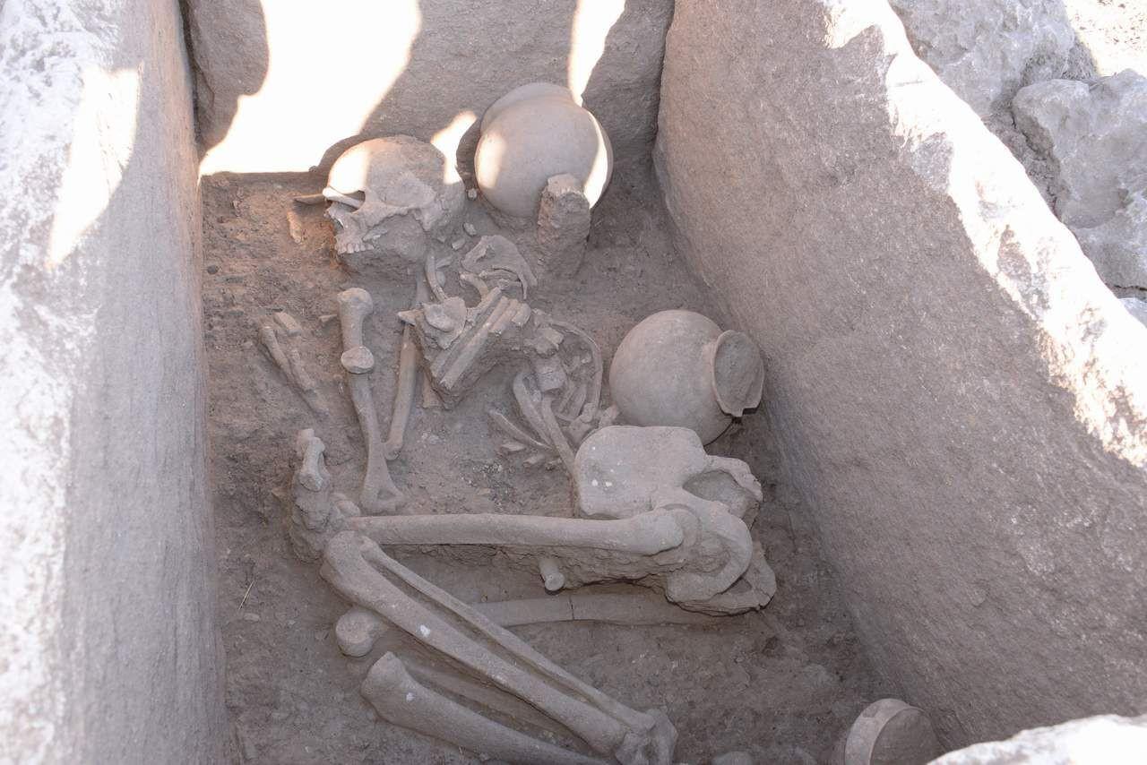 Diyarbakır'daki Çayönü Höyüğü'nde tarihi keşif! 5 bin yaşındalar! - Resim: 3
