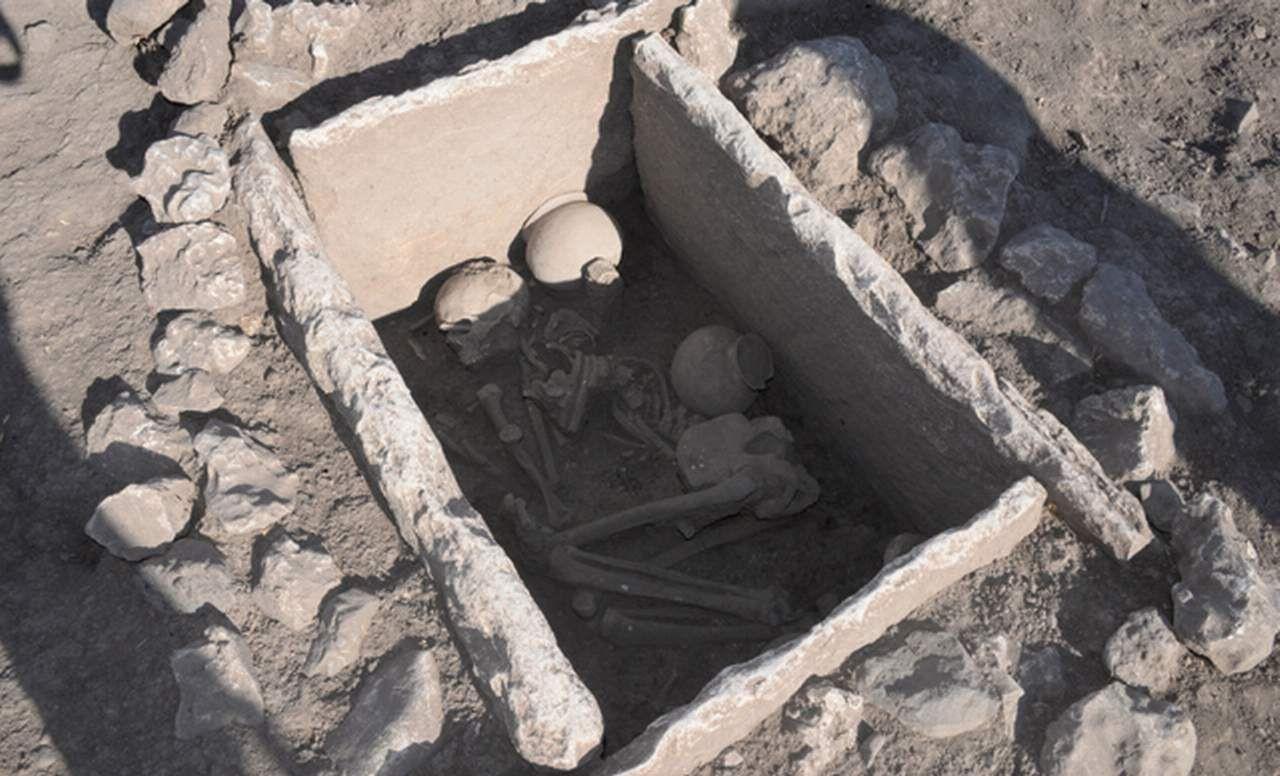 Diyarbakır'daki Çayönü Höyüğü'nde tarihi keşif! 5 bin yaşındalar! - Resim: 2