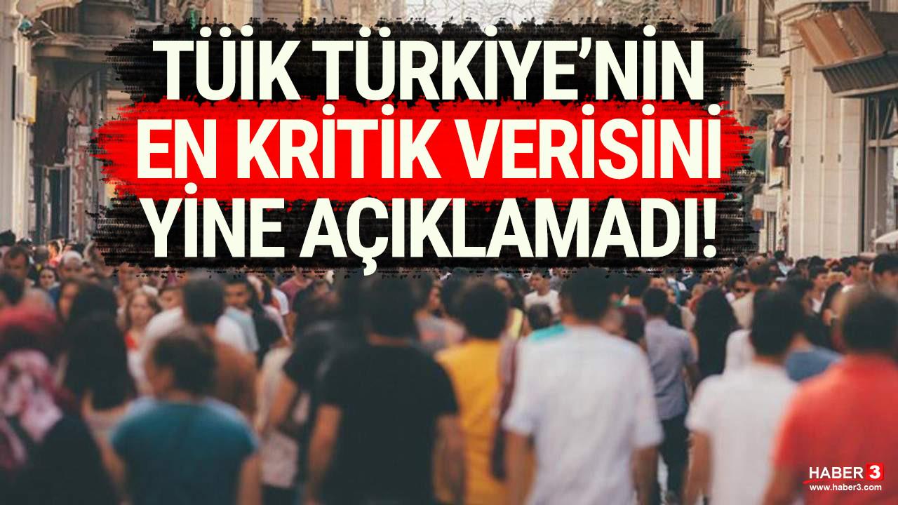 TÜİK Türkiye için kritik öneme sahip verileri yine erteledi