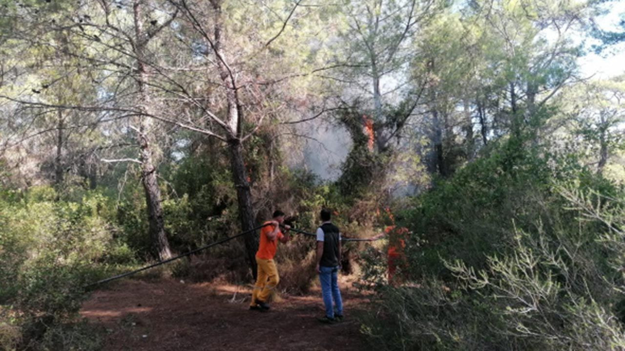 Ormanı yakarken suçüstü yakalandı - Resim: 2