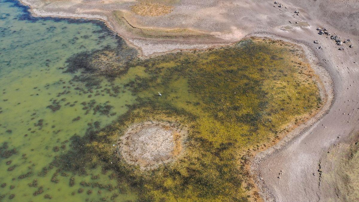 Devegeçidi Baraj Gölü alarm veriyor! - Resim: 3