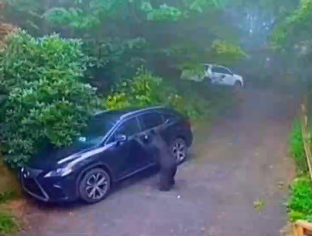 Otomobilinin kapısını açınca dehşete düştü - Resim: 1