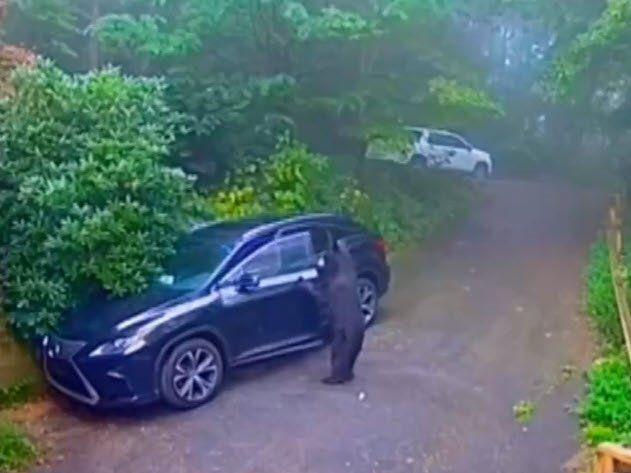 Otomobilinin kapısını açınca dehşete düştü - Resim: 4