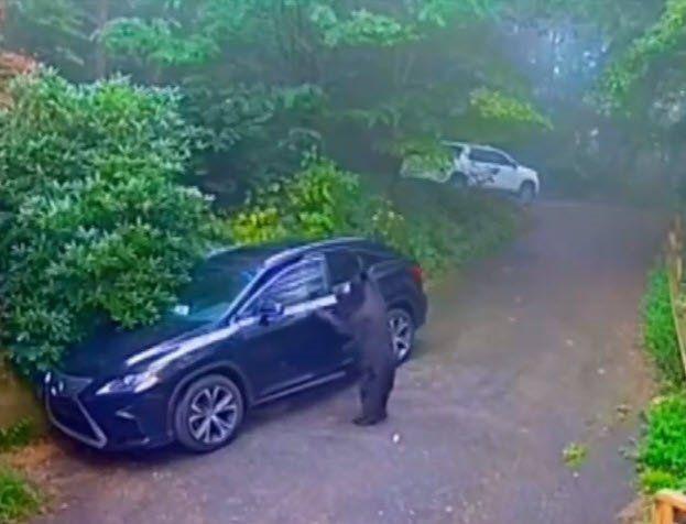Otomobilinin kapısını açınca dehşete düştü - Resim: 3