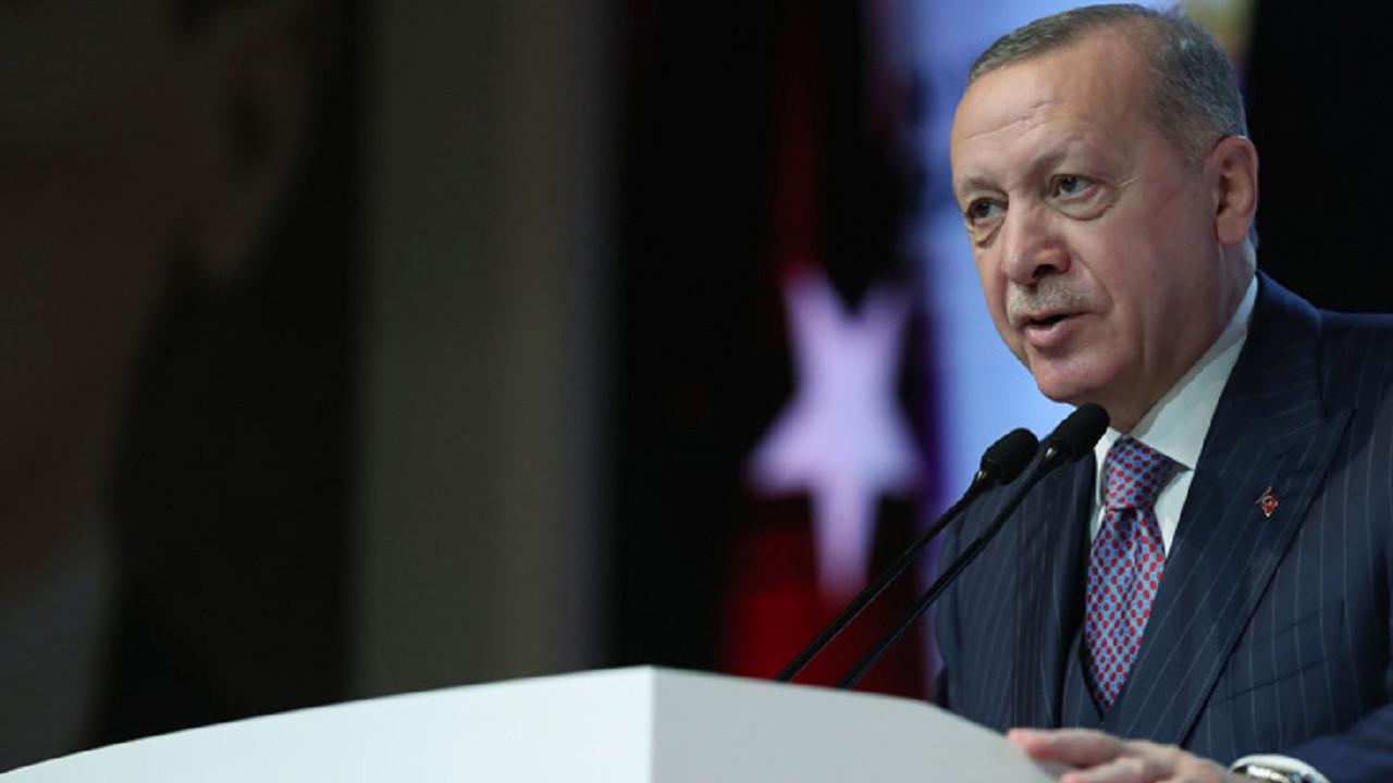 Erdoğan'ın büyükelçi restine ilk tepki o 2 ülkeden geldi