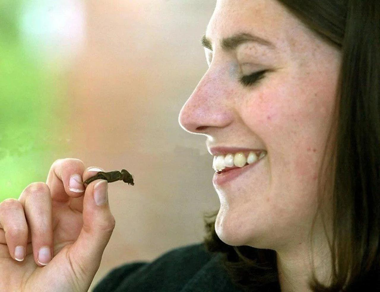 Yenilebilir böcekler süpermarketlere geliyor - Resim: 4