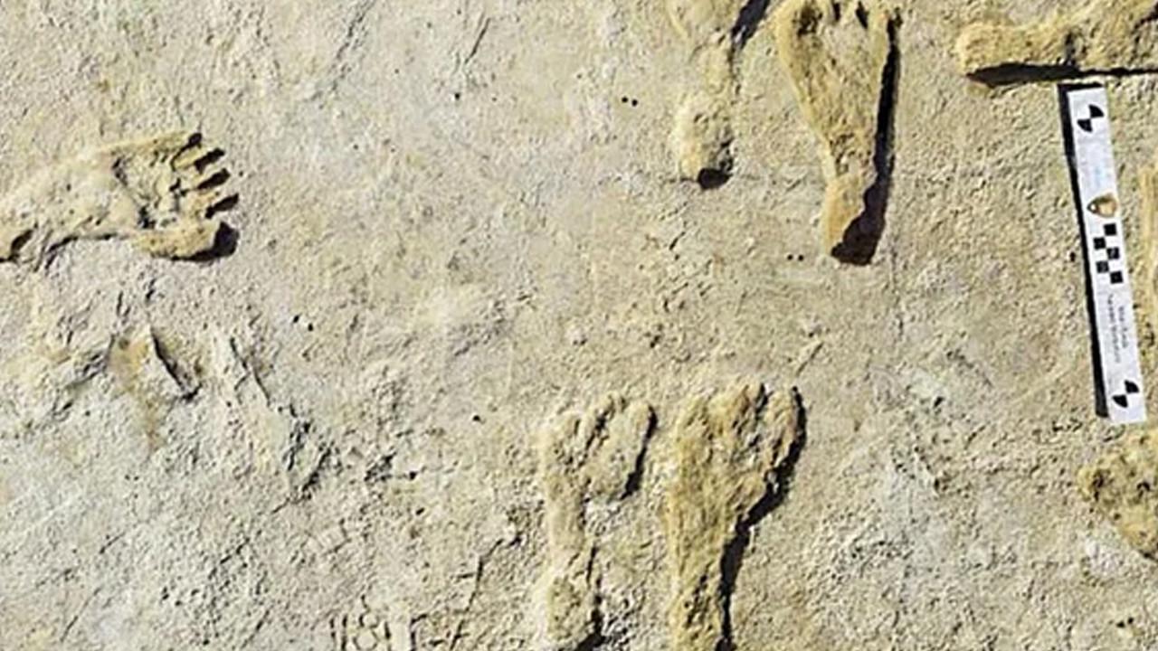 Yerleşim tarihi yeniden yazılıyor: 23 bin yıllık insan ayak izlerine rastlandı