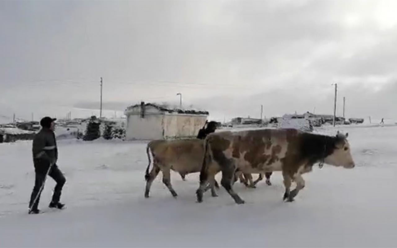 Sibirya değil Türkiye! İnanılmaz görüntüler - Resim: 1