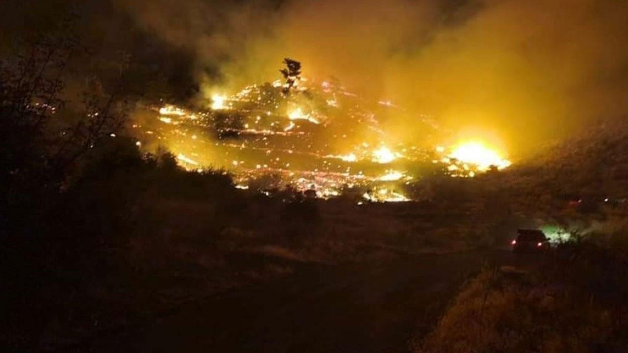 Muğla'da korkutan yangın! Rüzgarla büyüdü