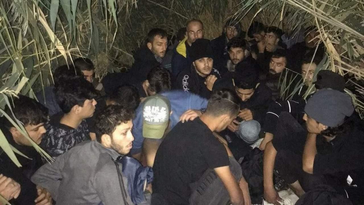 Sazlıkta 28 kaçak göçmen çıktı