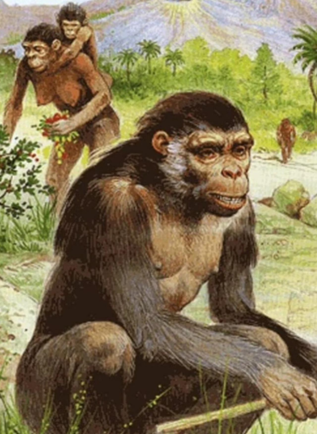 6 milyon öncesine ait ayak izleri bulundu - Resim: 4