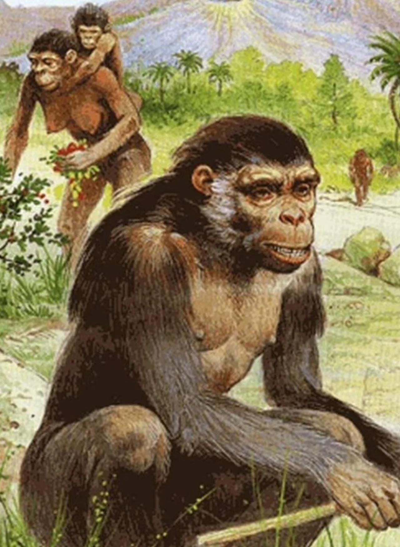 İnsanlık tarihini değiştirecek keşif: Tam 6 milyon yaşında - Resim: 4