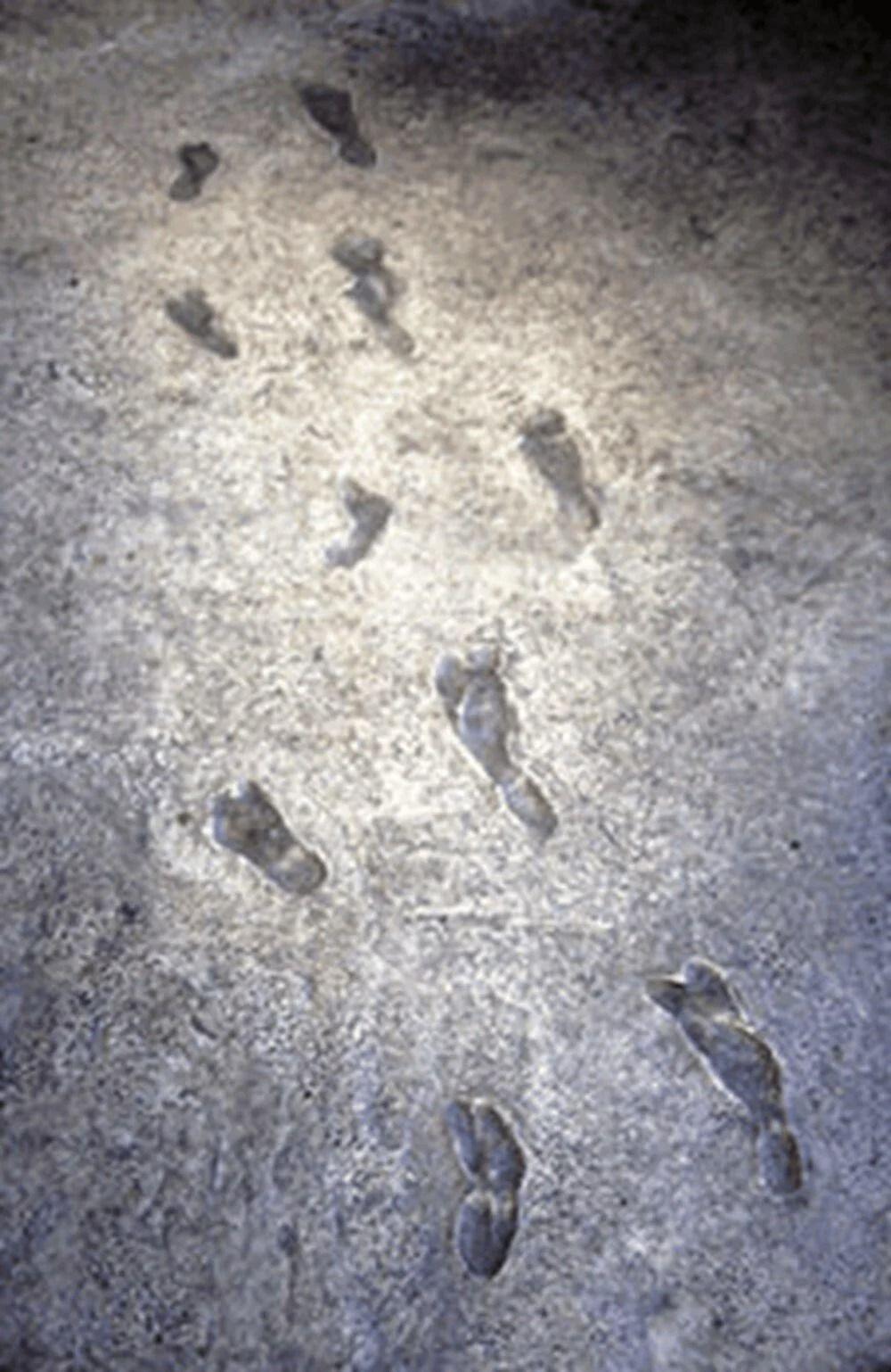6 milyon öncesine ait ayak izleri bulundu - Resim: 2