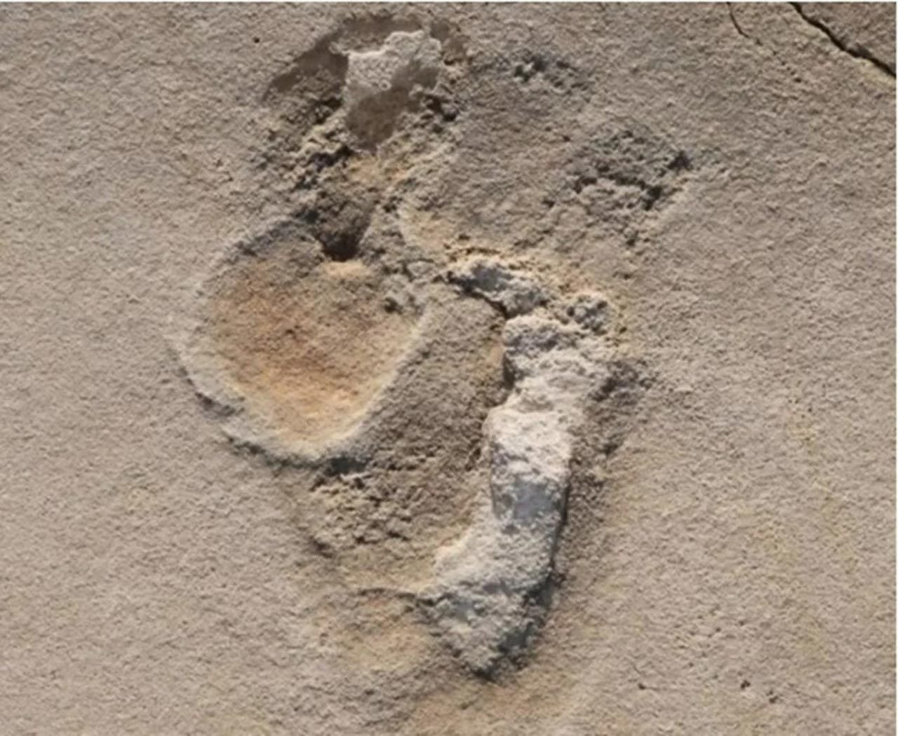 İnsanlık tarihini değiştirecek keşif: Tam 6 milyon yaşında - Resim: 1