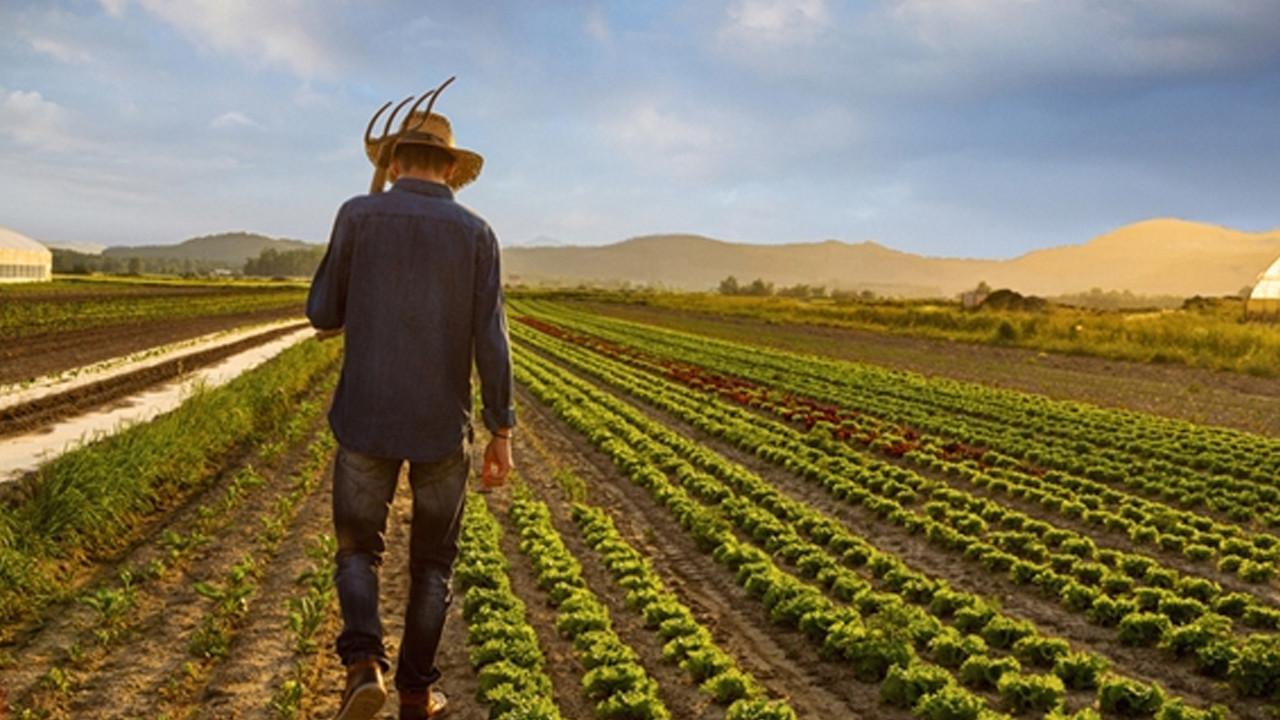 Çiftçi isyan etmesin de kim etsin! Son bir yılda yüzde 200 zamlandı