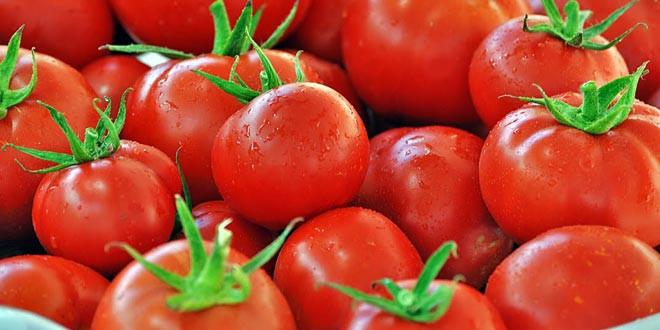 Türk domatesine bir darbe de Irak'tan