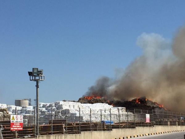 Tekirdağ'da büyük yangın ! 200 bin ton küle döndü