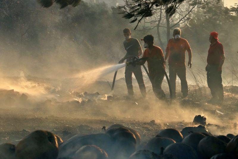 Hatay'daki orman yangınında sabotaj talimatı Suriye'den