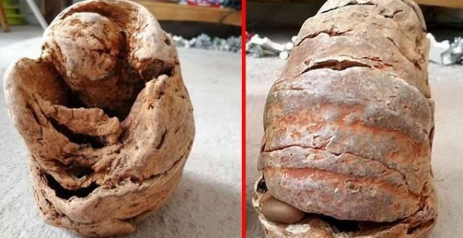 Fosil sandılar bomba çıktı!